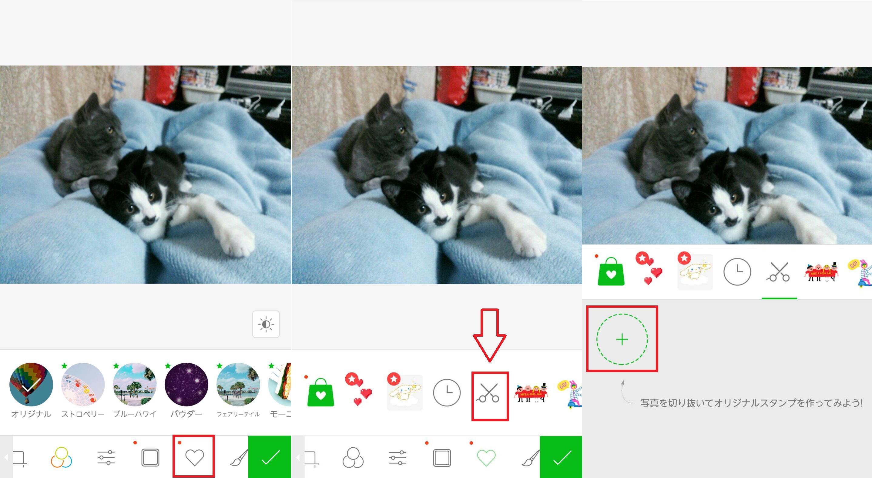 猫の写真を加工