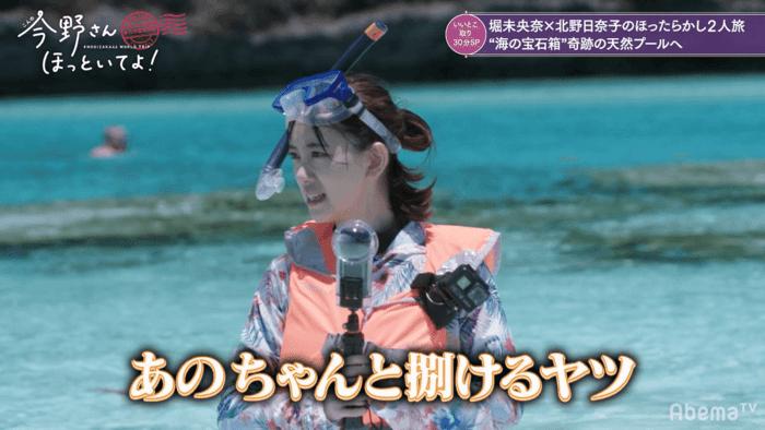 乃木坂46 アイドル 天然